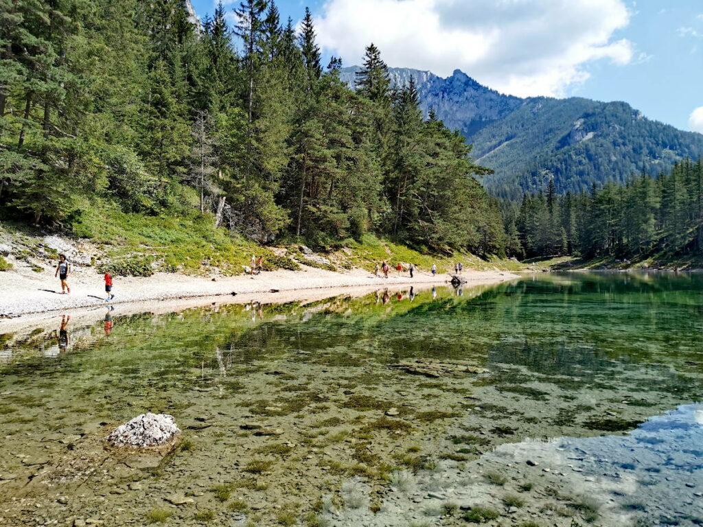 Österreich Seen de Luxe - die leichte Wanderung um den Grünen See, mit Blick zum Hochschwab