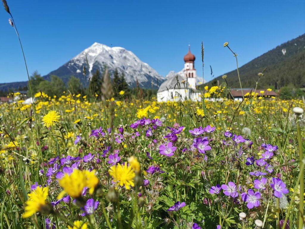 Im Österreich Urlaub aus der blumenreichen Leutasch zur Wettersteinhütte